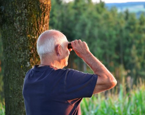 Retired pensioner bird-watching